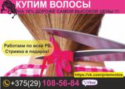 Продать волосы. Гродно и область. Купим волосы.