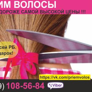 Продать волосы Гродно. Скупка волос по всей РБ.