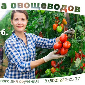 Продам Овощевод (Заплатим за ваше обучение)